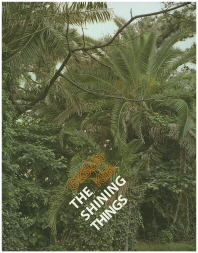 The Shining Things