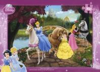 Disney 300-04