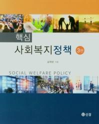 핵심 사회복지정책