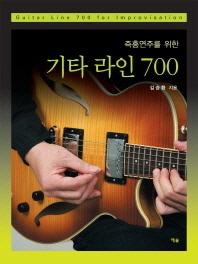 즉흥연주를 위한 기타 라인 700