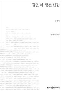 김윤식 평론선집