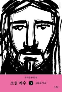 소설 예수. 3: 새로운 약속