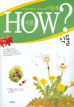 어떻게 HOW 식물