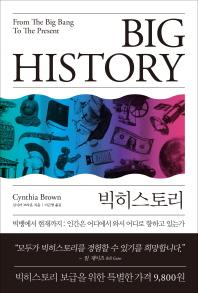 빅히스토리(Big History)