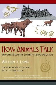 How Animals Talk