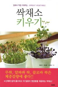 싹채소 키우기