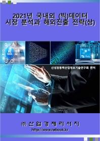 2021년 국내외 (빅)데이터 시장분석과 해외진출 전략(상)