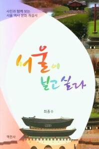 서울이 보고 싶다