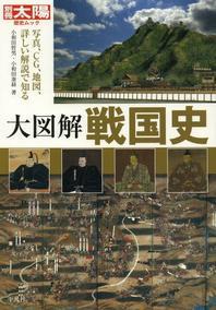 大圖解戰國史 寫眞,CG,地圖,詳しい解說で知る
