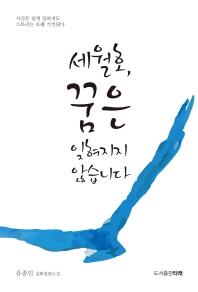 세월호, 꿈은 잊혀지지 않습니다