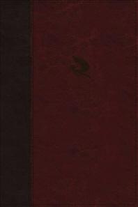 The Spirit-Filled Life Bible