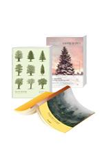 나무로 읽는 교양(길고 긴 나무의 삶+나무처럼 생각하기+ 나무의 시간)