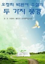 오정희ㆍ박완서 소설의 두 가지 풍경