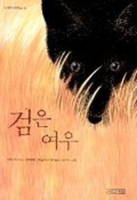 검은 여우(사계절아동문고 45)