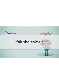 Pat the Animals
