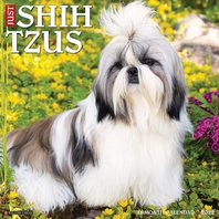 Just Shih Tzus 2022 Wall Calendar (Dog Breed)