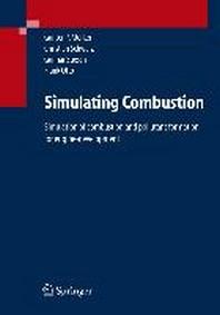 Simulating Combustion