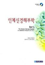 인체신경해부학
