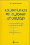 Algebraic Surfaces and Holomorphic Vector Bundles