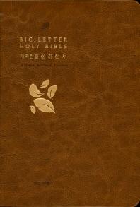 읽기 편한 큰글자 성경전서(브라운)(신46)(소)(단본)(개역한글)