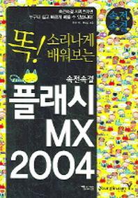플래시 MX 2004