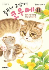줄무늬 고양이 코우메. 11