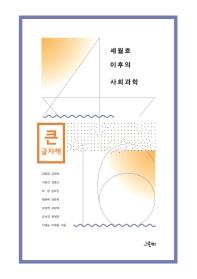 세월호 이후의 사회과학(큰글자책)