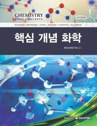 핵심 개념 화학