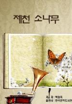 제천 소나무_박광옥