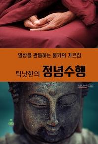 틱낫한의 정념수행 _일상을 관통하는 불가의 가르침