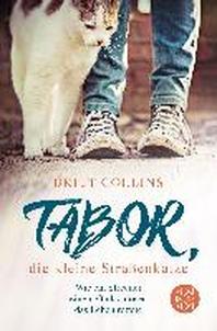 Tabor, die kleine Strassenkatze