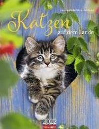 Katzen auf dem Lande Kalender 2022