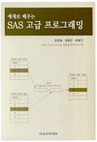예제로 배우는 SAS 고급 프로그래밍