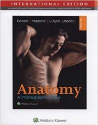 Anatomy International Edition