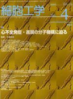 細胞工學 VOL.26NO.4(2007)
