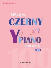와이 피아노 100