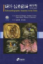 태아 심초음파 해부학 가이드라인