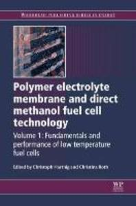 Polymer Electrolyte Membrane and Direct Methanol Fuel Cell Technology