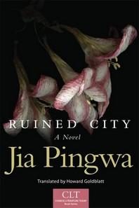 Ruined City, Volume 5