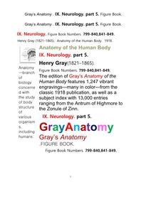 그레이아나토미 해부학의 제9권 5부 신경해부학,신경학. 도해 그림책.Gray's Anatomy . IX. Neurology. part 5. Figure Book ,by Henry Gray