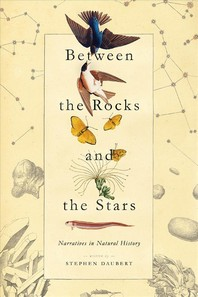 Between the Rocks and the Stars