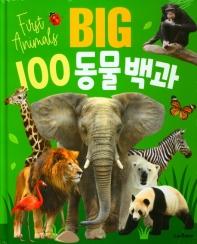 BIG 100 동물백과