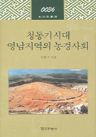 청동기시대 영남지역의 농경사회