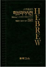 스트롱코드 히브리어사전