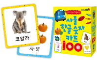 타요와 놀이 학습하는 사물 한글 숫자 카드 100