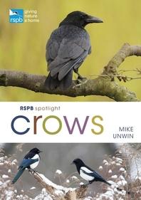 Rspb Spotlight Crows