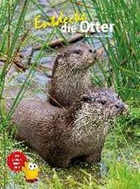 Entdecke die Otter