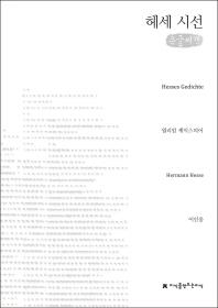 헤세 시선(큰글씨책)