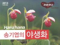 송기엽의 야생화(Calendar)(2013)