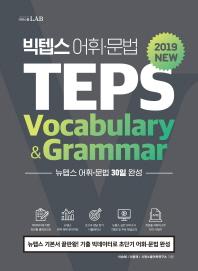 빅텝스 어휘 문법 TEPS(Vocabulary & Grammar)(2019)